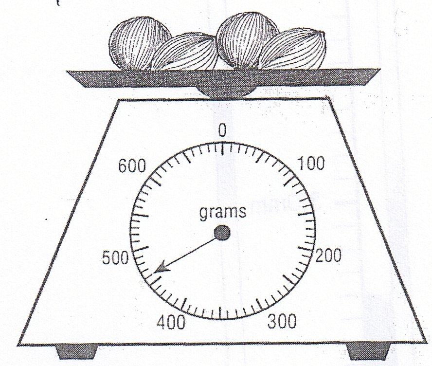 Can you read the scales correctly – Reading Scales Worksheet